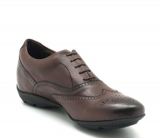 Belluno Elevator Sneakers Brown +2''