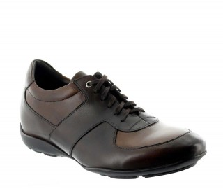 Bordighera Elevator Sneakers Brown +2.0''