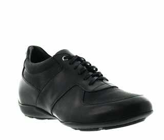 Bordighera Elevator Sneakers Black +2''