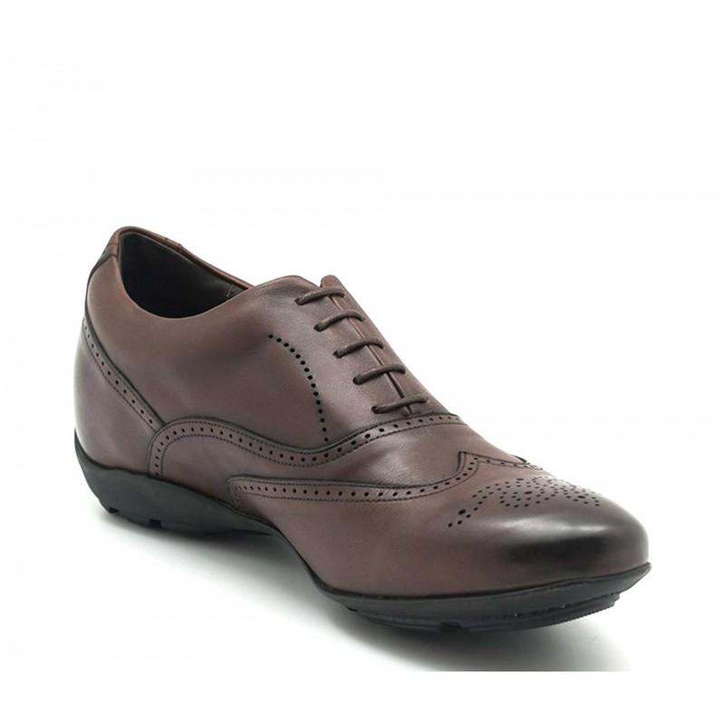 sneaker a talon compensé Homme - Marron - Cuir de veau pleine fleur - +5 CM - Belluno - Mario Bertulli